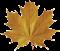 Karre Furs Emblem